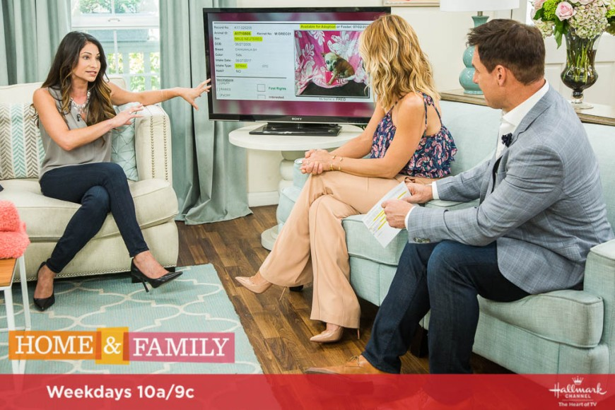 Home and Family 5238 Final Photo Assets